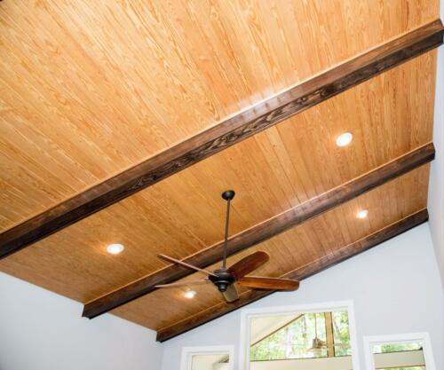 02 Blight Ceiling - New Single Family Home Custom Construction